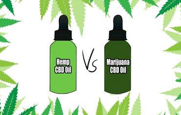 HEMP Oil vs CBD Oil: What's the difference?